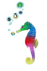 Image hippocampe
